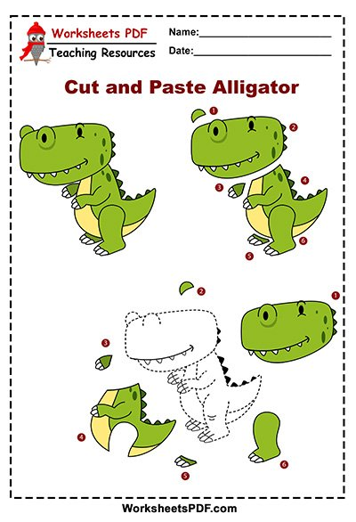 alligator activity