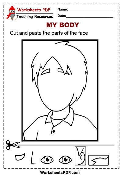 Cut and Paste the Parts of the Face worksheet pdf