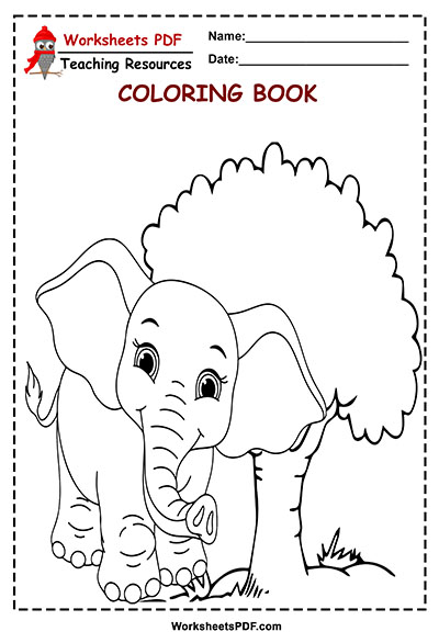 8 elephant zafari