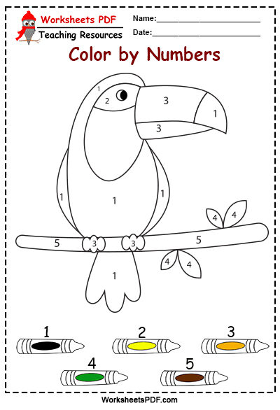 toucan free color by numbers